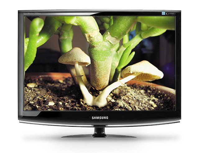 Samsung 2233NW