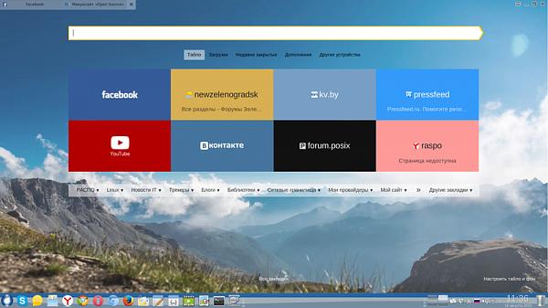 яндекс браузер для Linux - фото 8